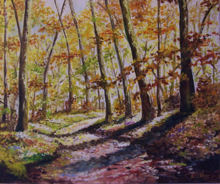 Path into the woods 7 - Image 0