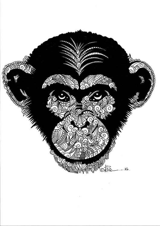 'Doodle Therapy Chimpanzee'