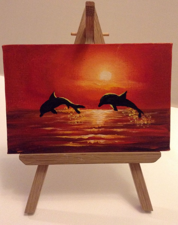 new dolphins - Image 0