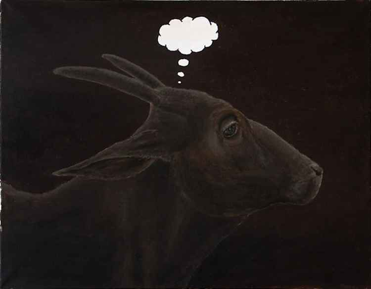 Cow with Empty Head -