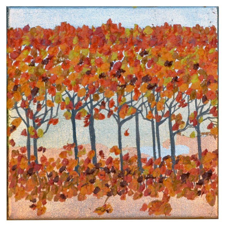"Autumn Forest - Thick Impasto Oil Painting 8 x 8 "" - Image 0"