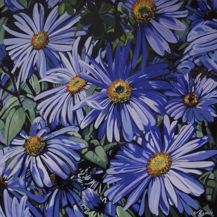 Autumnal Asters - Image 0
