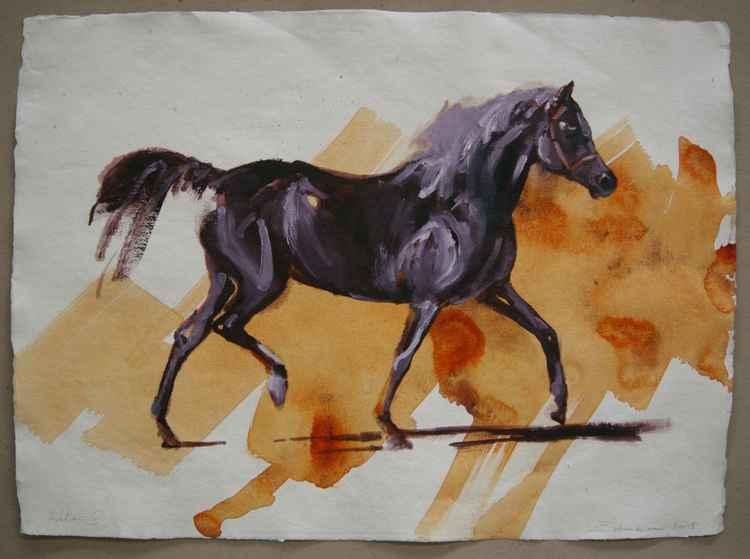 Arabian I (study) -