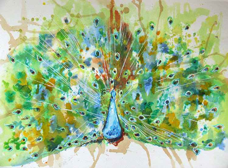 Peacock II / Watercolour -