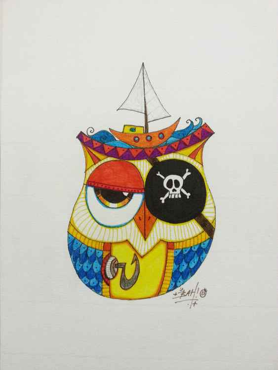 The Pirate Owl and His Boat