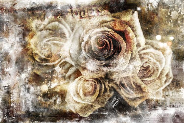 Urban Roses - Image 0