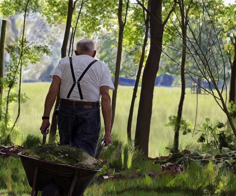 The Old Gardener - Image 0