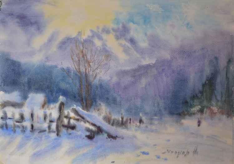 velvety winter