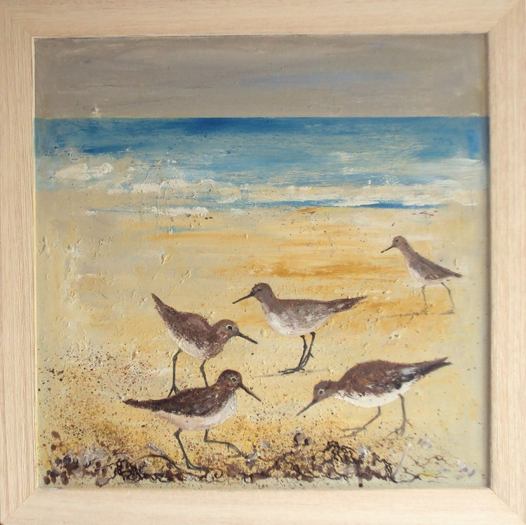 Beach Wading Birds - Image 0