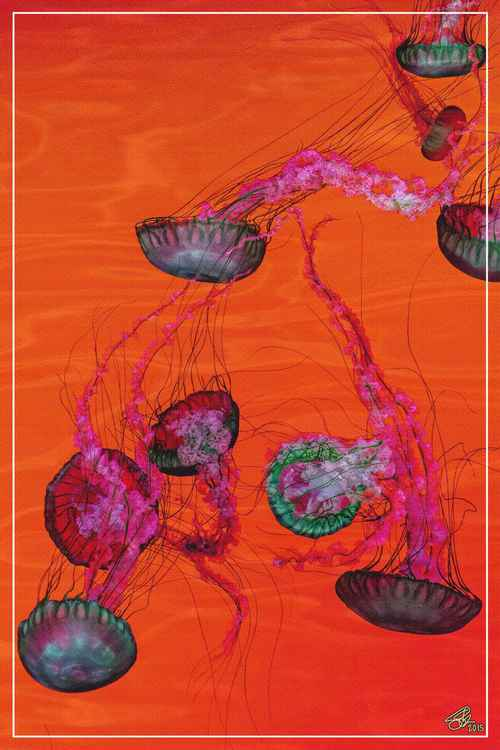 SYMPHONY No.9 - JELLYFISH IN RED -