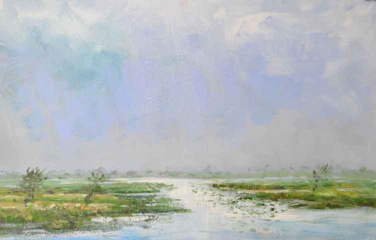 Landscape Zaandam Noord-Holland -
