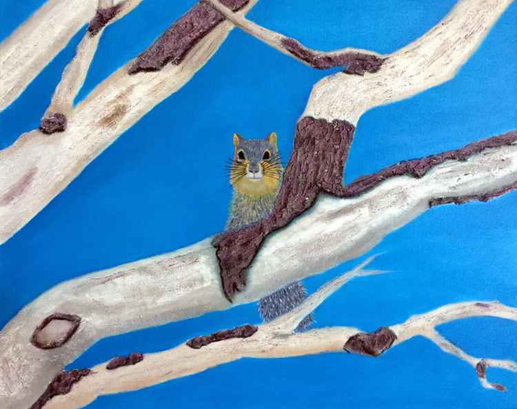 OAK BRANCHES WITH FOX SQUIRREL