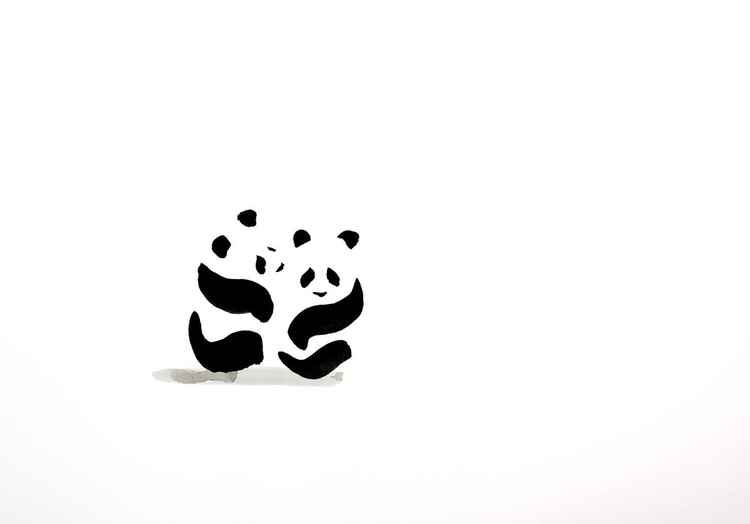 Two panda cubs 4230A -