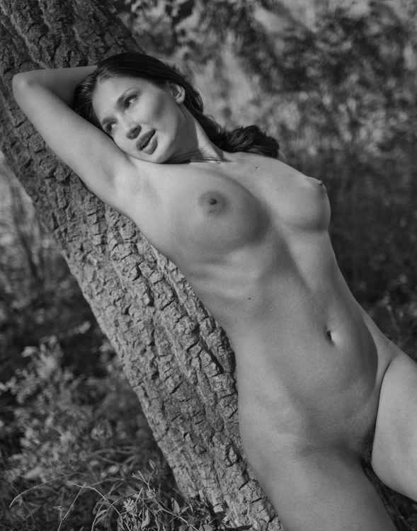 Tree Girl IV -