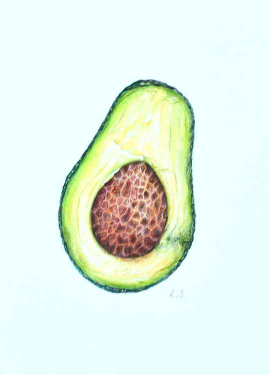 Avocado Original colored pencils drawing