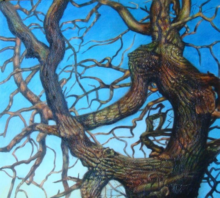 Morning tree - Image 0
