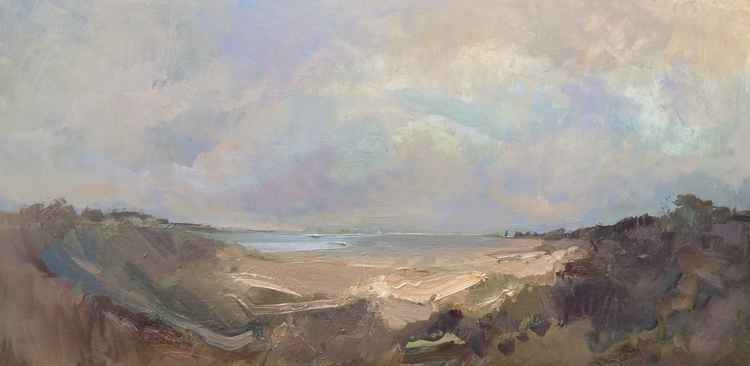 Windswept Coast -