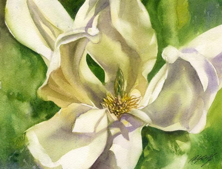 yellow magnolia - Image 0