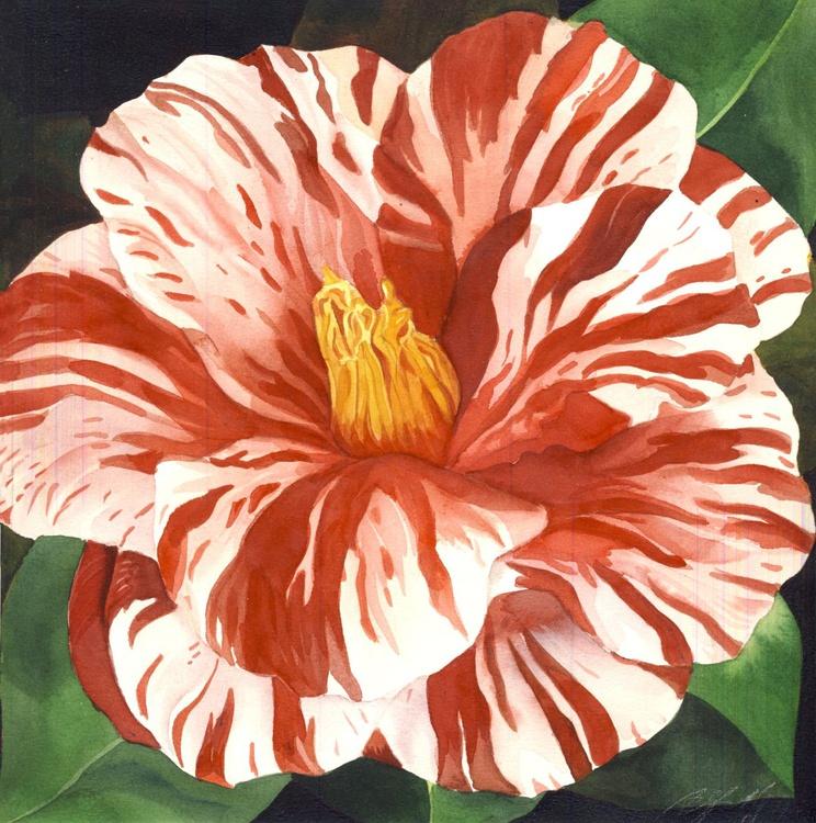 spring camellia - Image 0