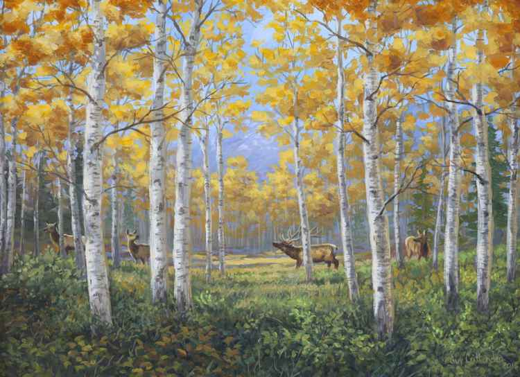 Aspen Meadow Courtship -