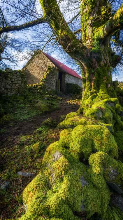 Emsworthy Barn on Dartmoor -