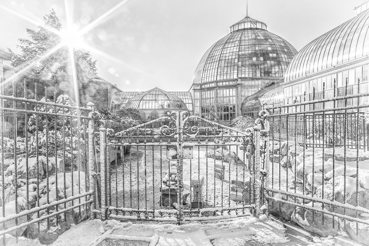 Winter at the Conservatory - Image 0