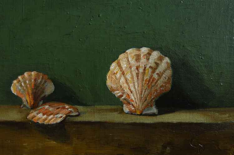 Seashells no. 4 -