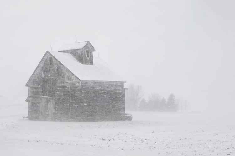 November on the American Prairie -