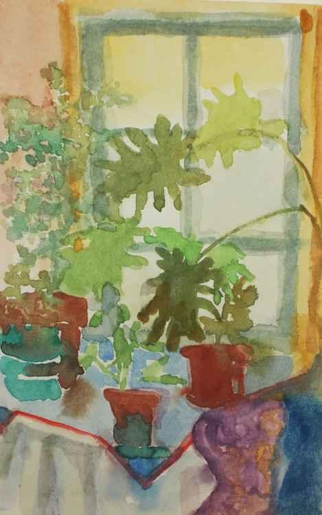 Plants in Front of Brooklyn Window