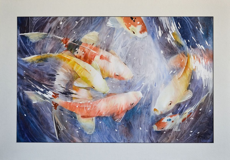 Koy-fish - Image 0
