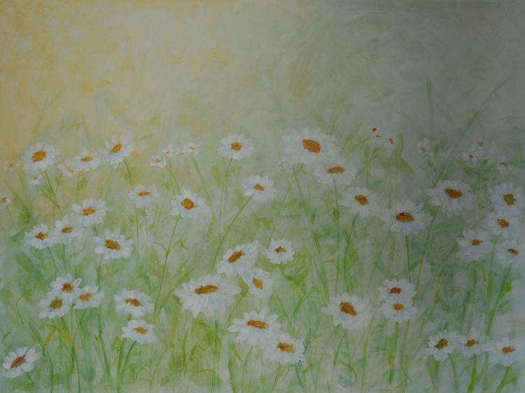 White daisies - Image 0