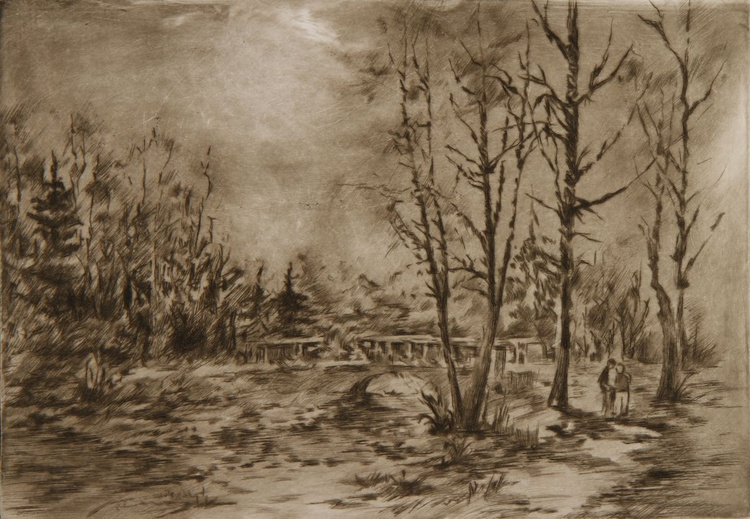 Bridge in the forest - Image 0