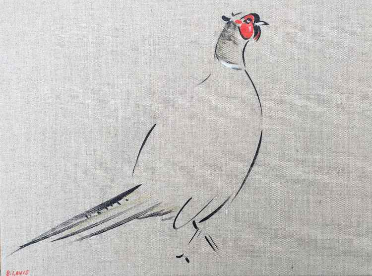 Pheasant 11 -