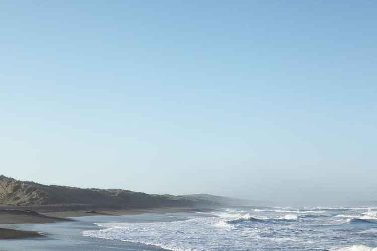 Bodega Beach -