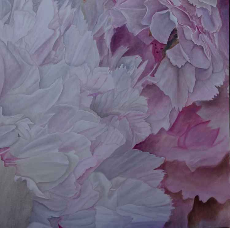 Two Peonies -