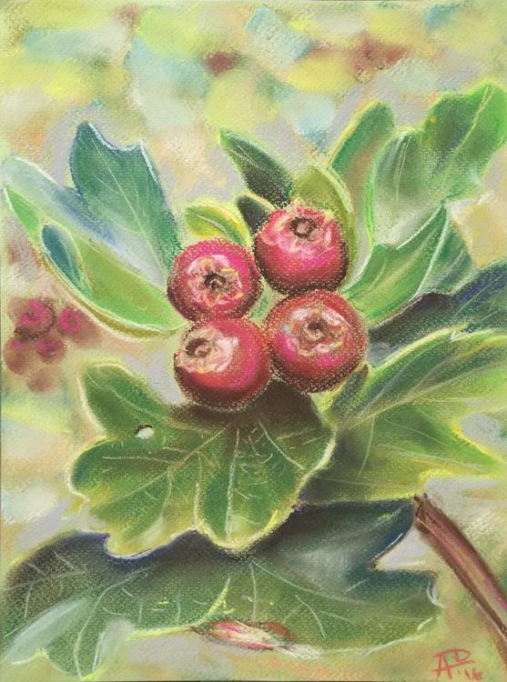 Berries - Image 0