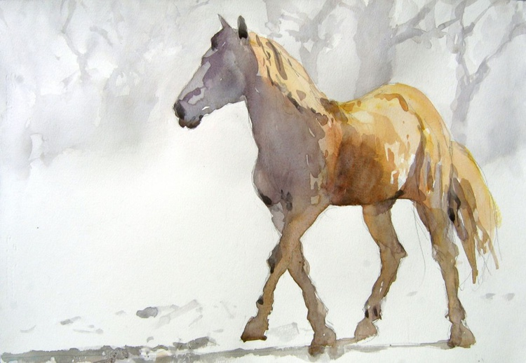 Horse in the  light - Image 0