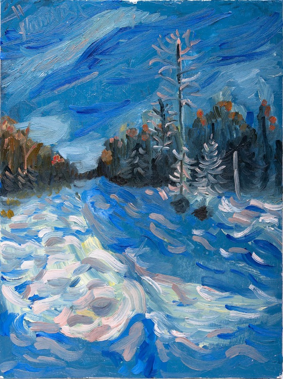 Winter forest - Image 0