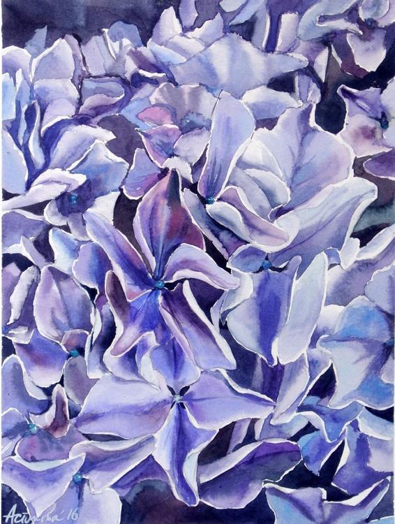 A Purple Hydrangea - Image 0