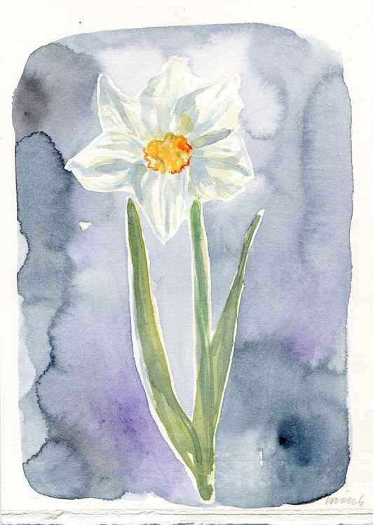 Original Watercolour Painting of a Single Narcissus Flower