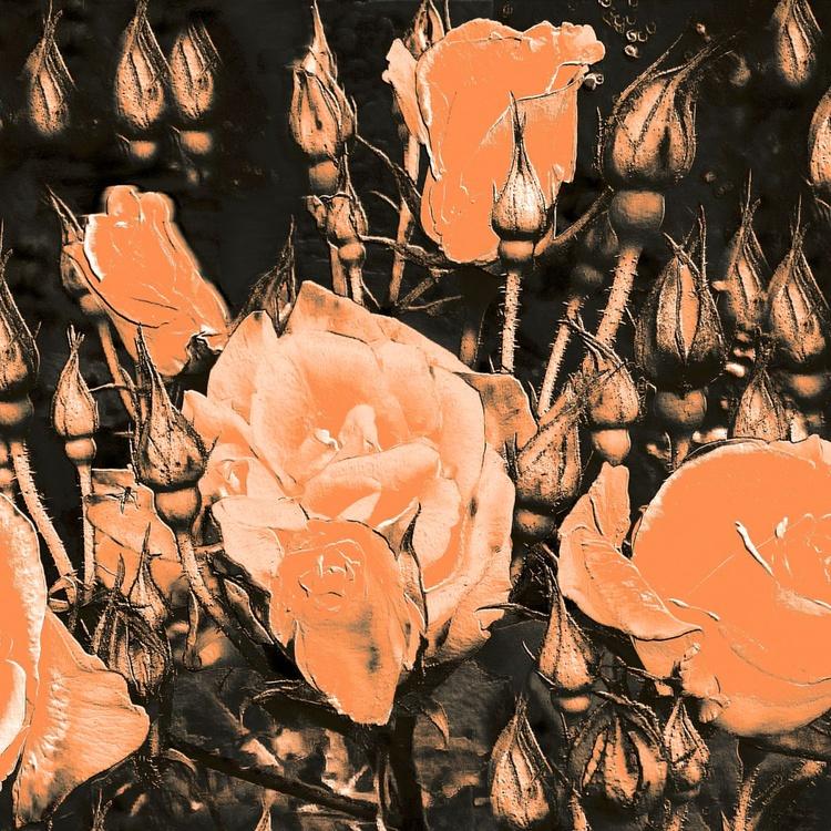 Very Fragrant Roses - Monoprint - Image 0