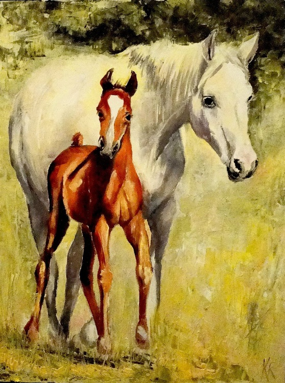 Mother and foal - Image 0