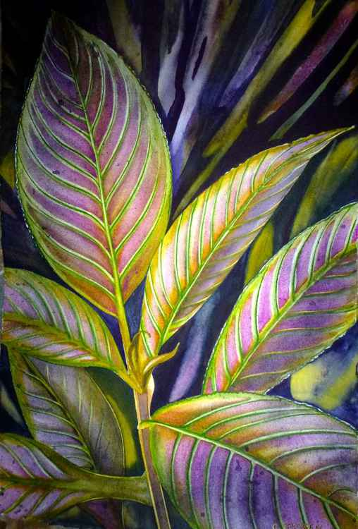 Pink and Green Leaves -
