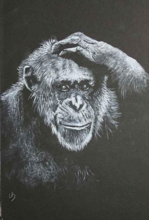 Realisation   (Chimpanzee)