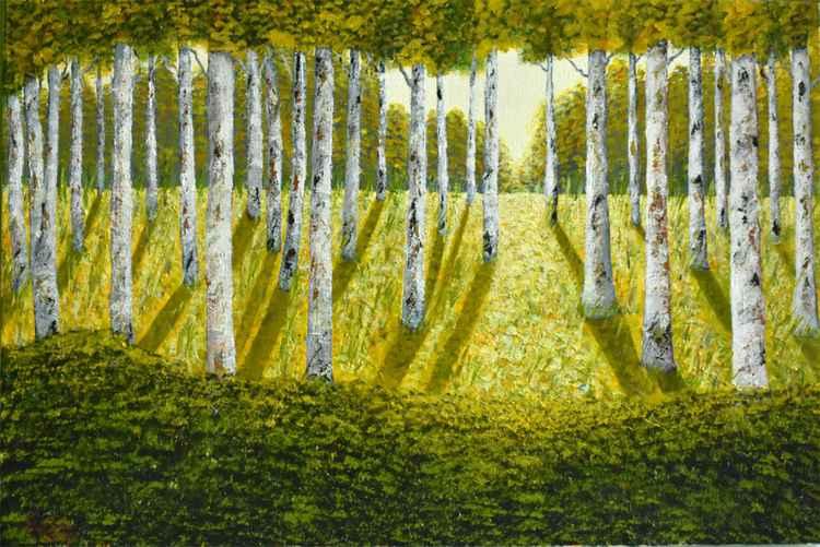 Autumn forest at sun light