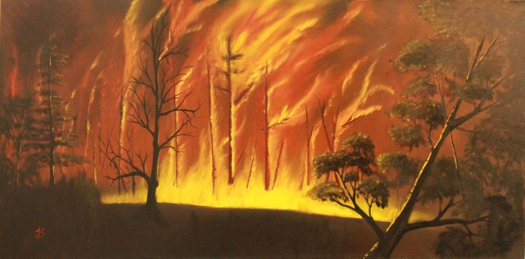 Woods on Fire - Image 0