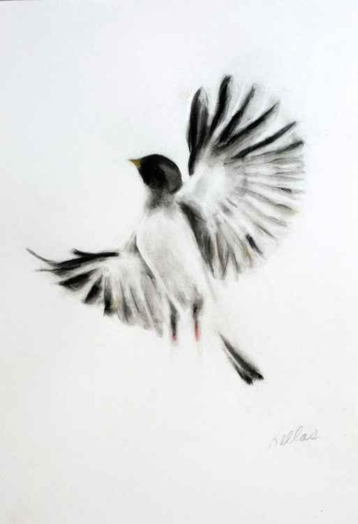 Proud Bird 2