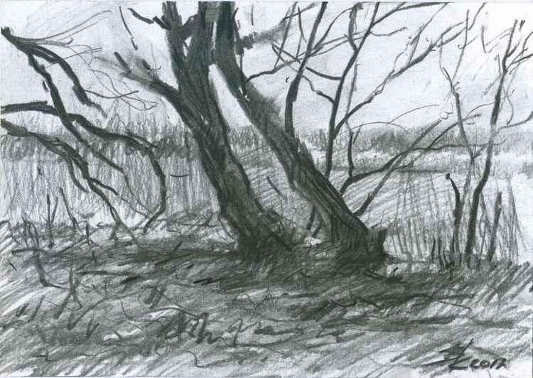 Wild coast#1 (sketch) -