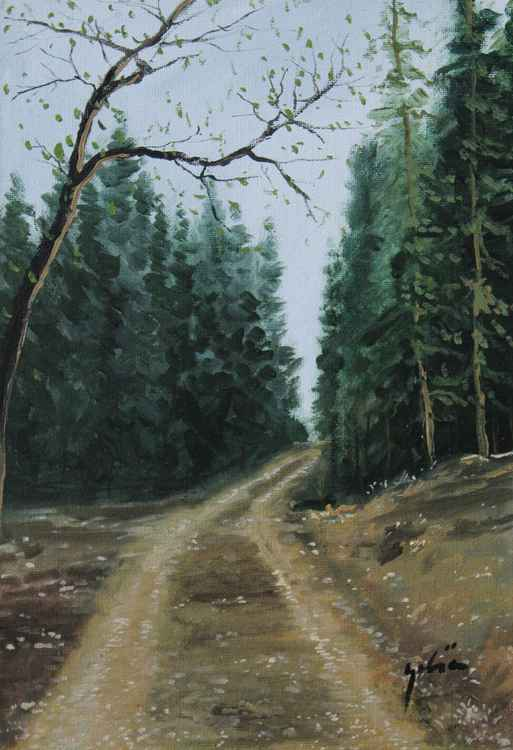 Road to forest -