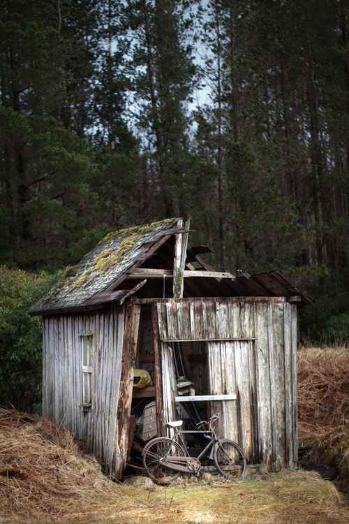 Old shed -